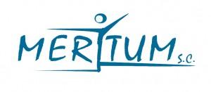 logo MERITUM