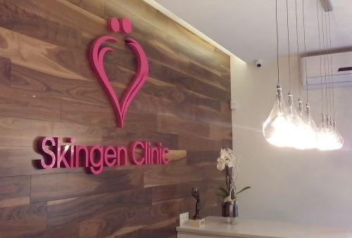 skingen1