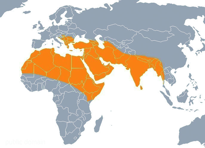 Obszar występowania szakala złocistego Źródło: wikipedia.org